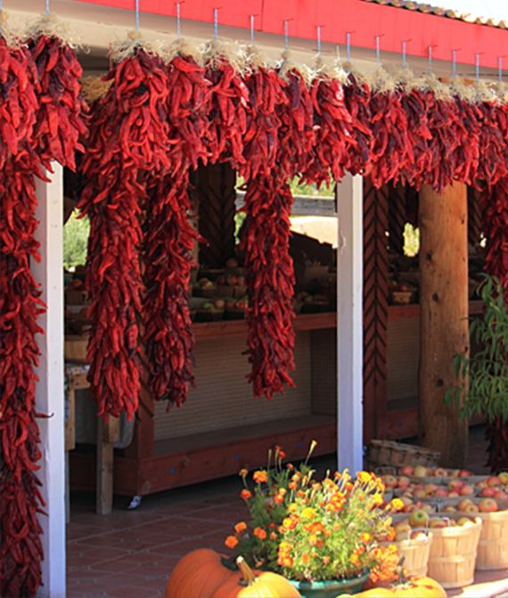 A bunch of dried red chilies strung up in front of a store